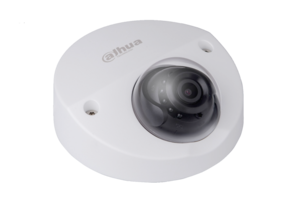 Dahua HDBW4231FP-AS 2MP  V-vormige Vandaal Dome